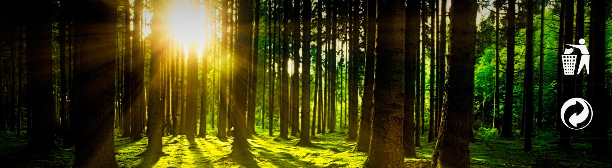 Medio ambiente 1 Espejo luz LED